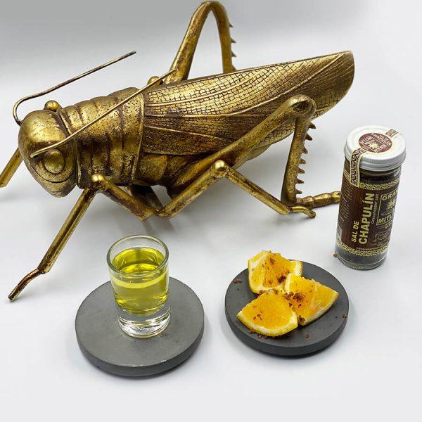 grasshopper salt on table